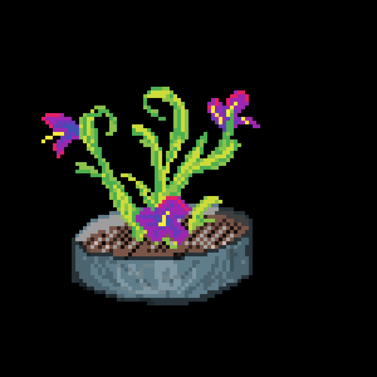 An Abstract flower