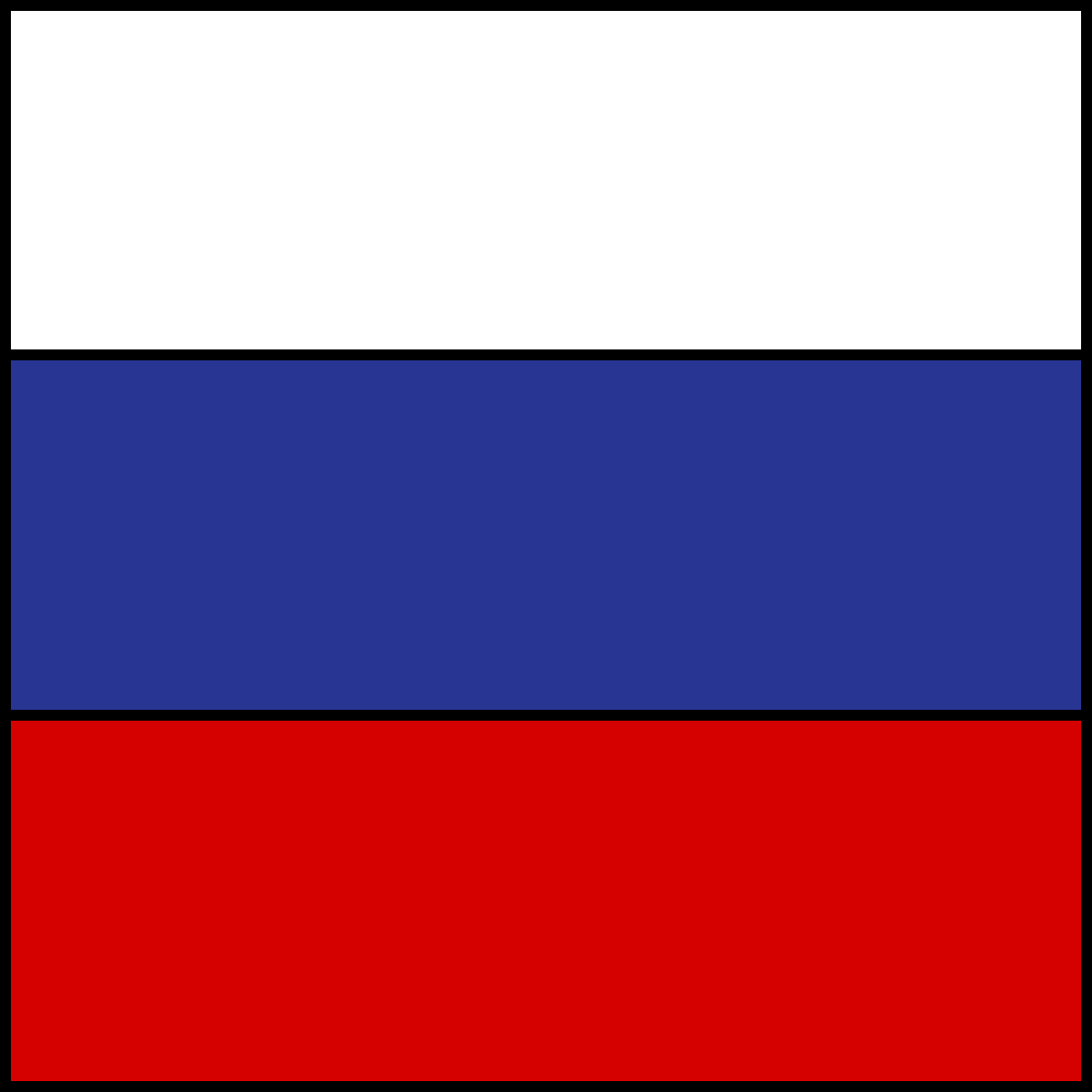 Russian Flag by ConnerM