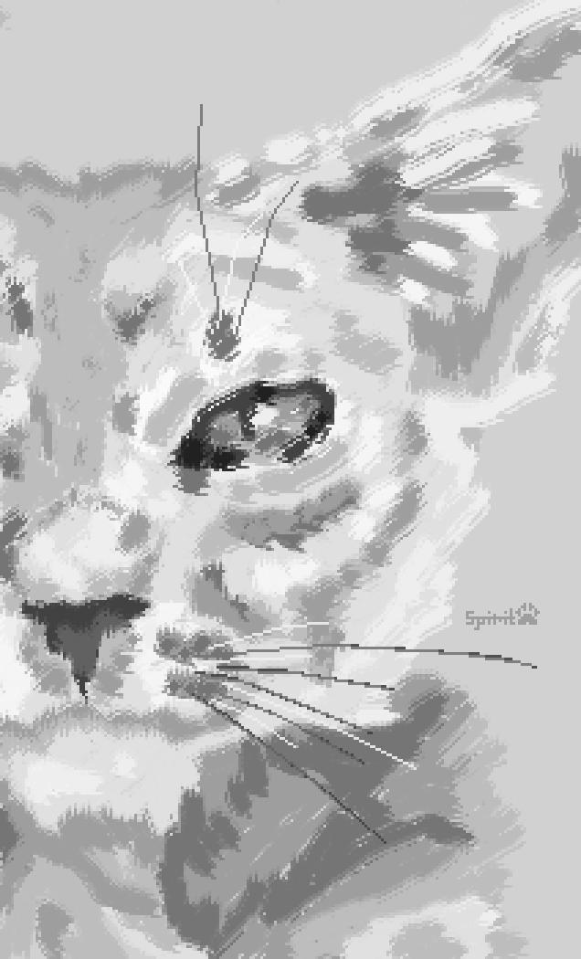Painted Cat by SpiritShiba