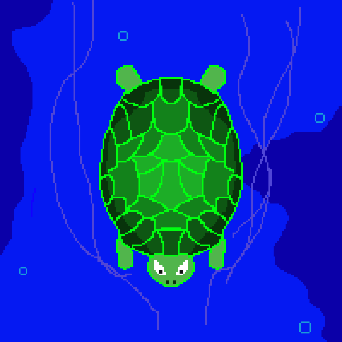 TURTLE by ThejedigamerYT