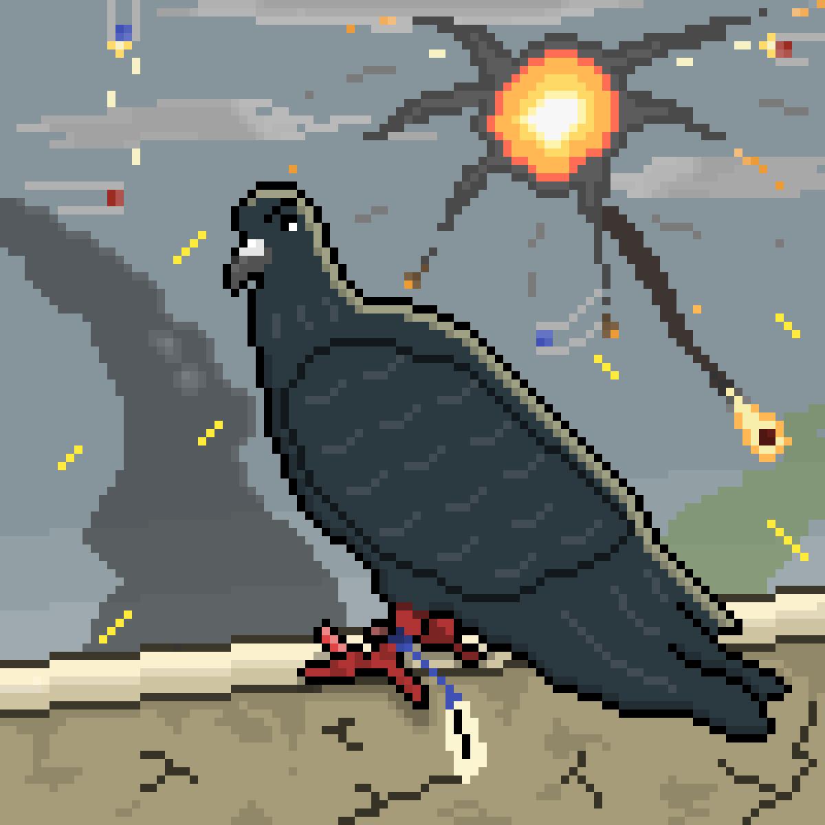 Homing Pigeon AKA Messenger Pigeon by PixelFarts