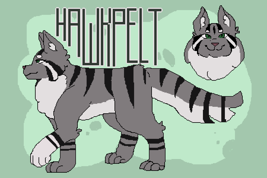 Hawkpelt Reference by zozzlez
