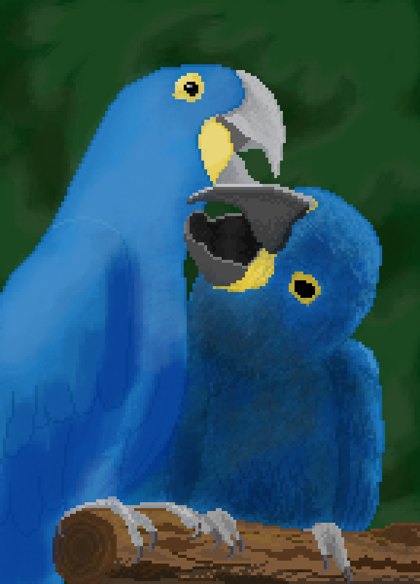 main-image-Blue Macaw  by Biology-nerd