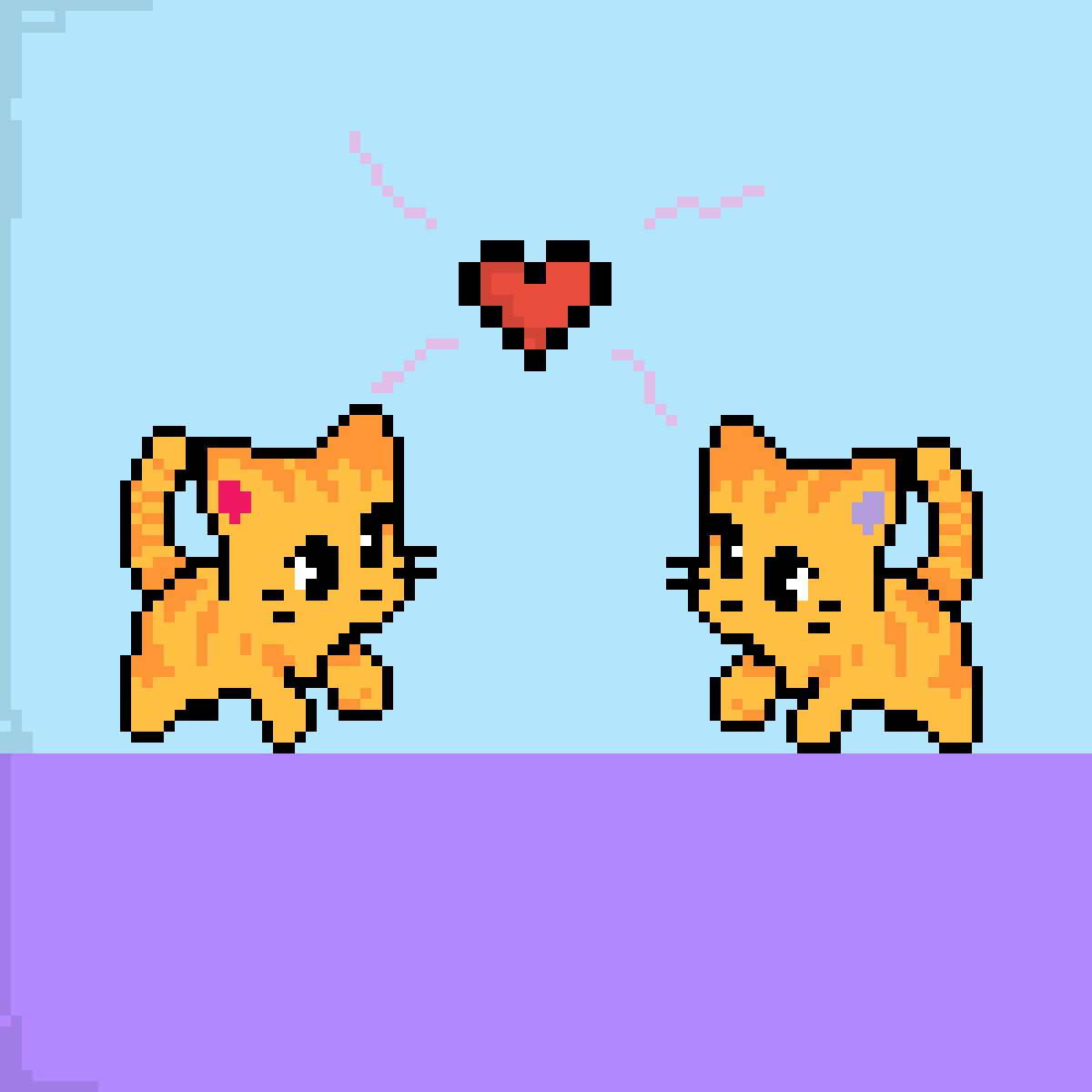 Cute cats in love<3