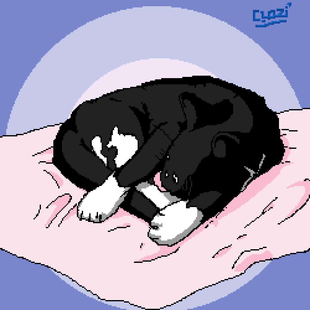 Sleeping Cat by QuasiMeteor