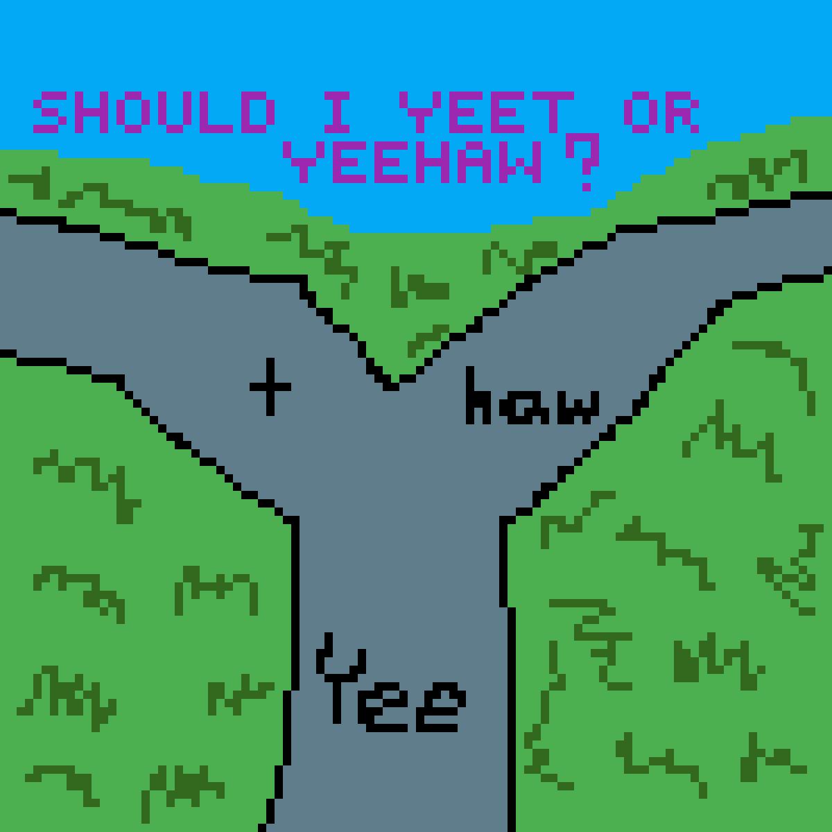 Should I Yeet Or Should I Yeehaw