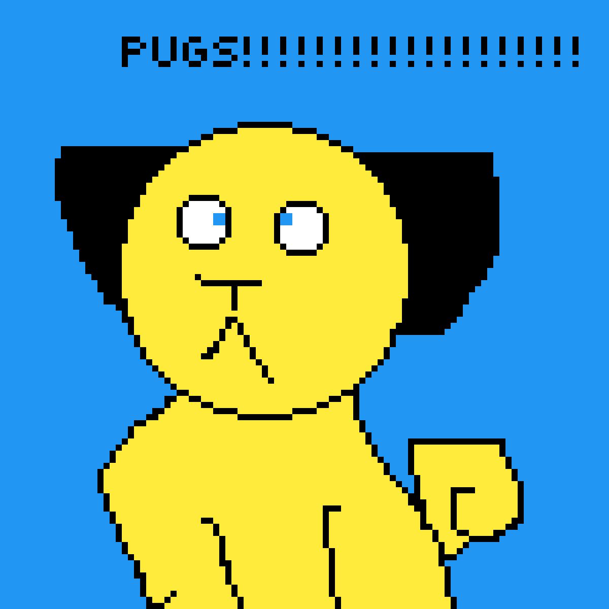 PUGS!!!!!!!!!!! by pugsarethebest