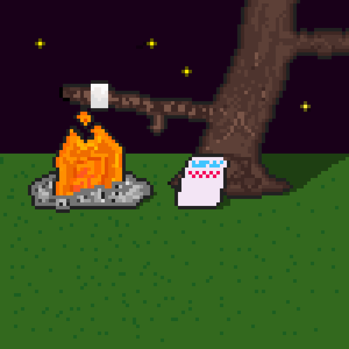 Makin' Smores On A Camping Trip