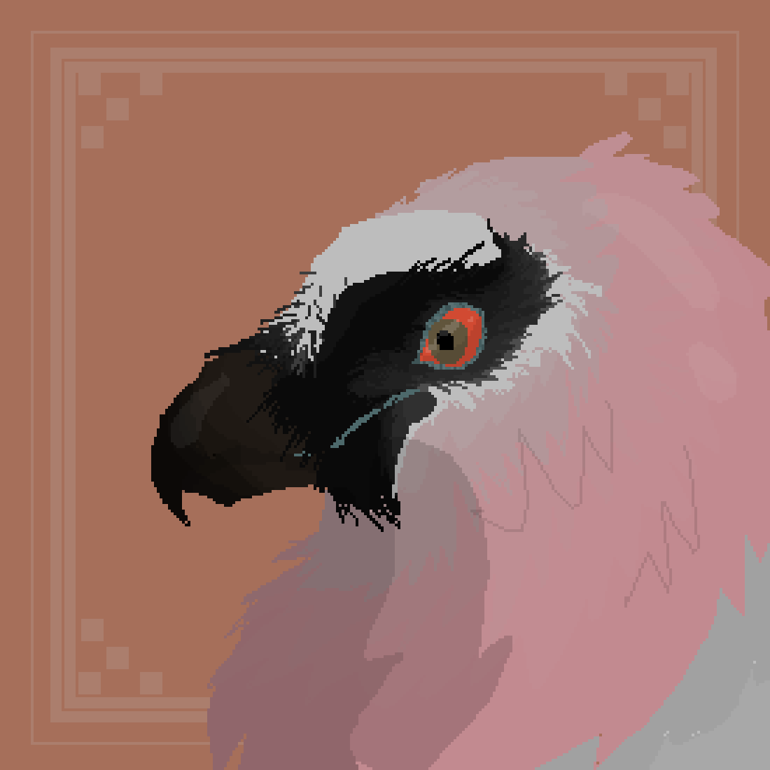 main-image-Bearded Vulture  by Reedtail111