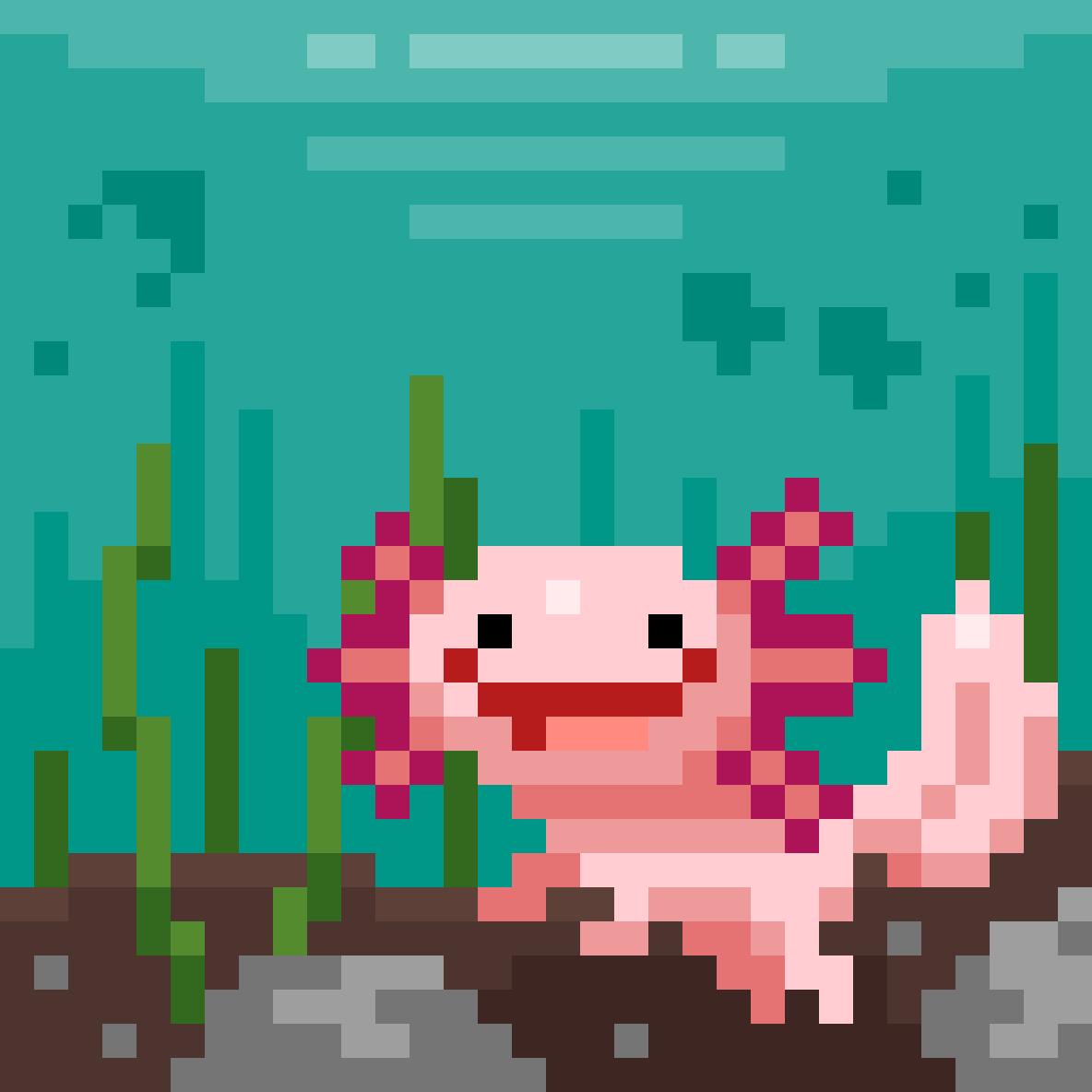 Axolotl :D by Squidy-Boi