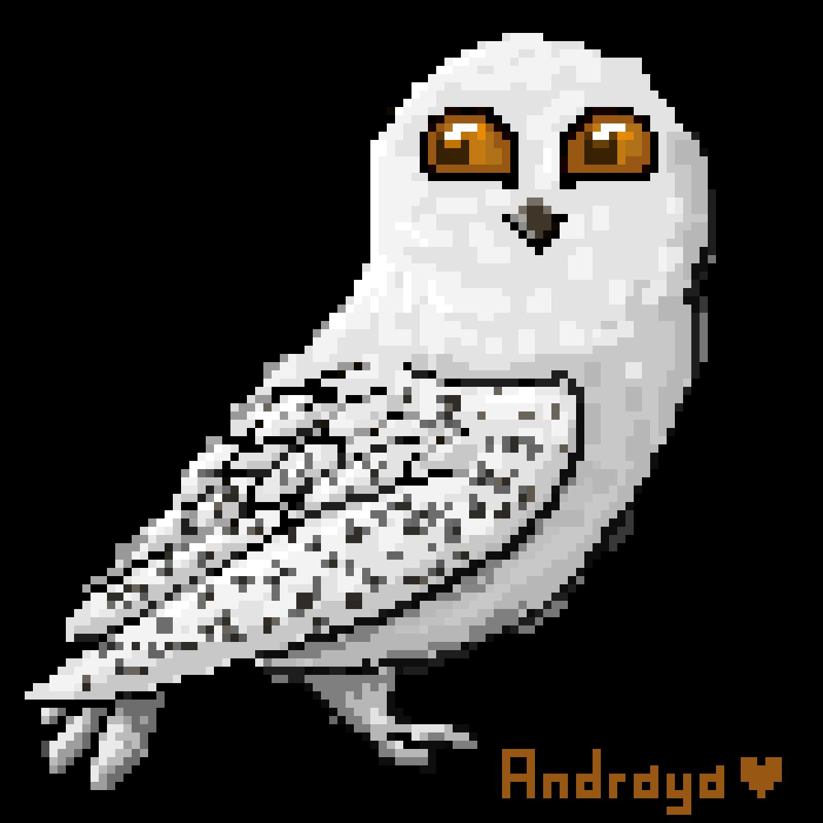 main-image-Hedwig  by Andraya