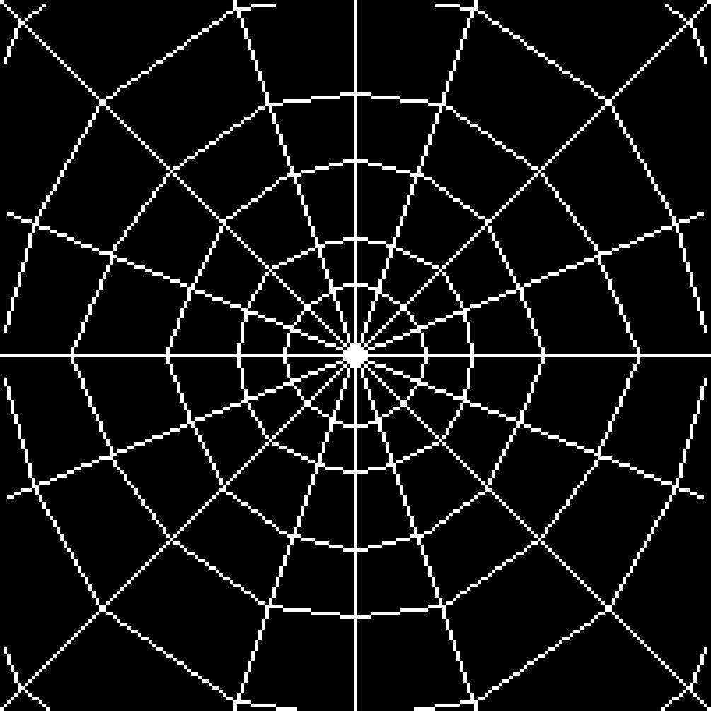 spider web by 1312ujnikm
