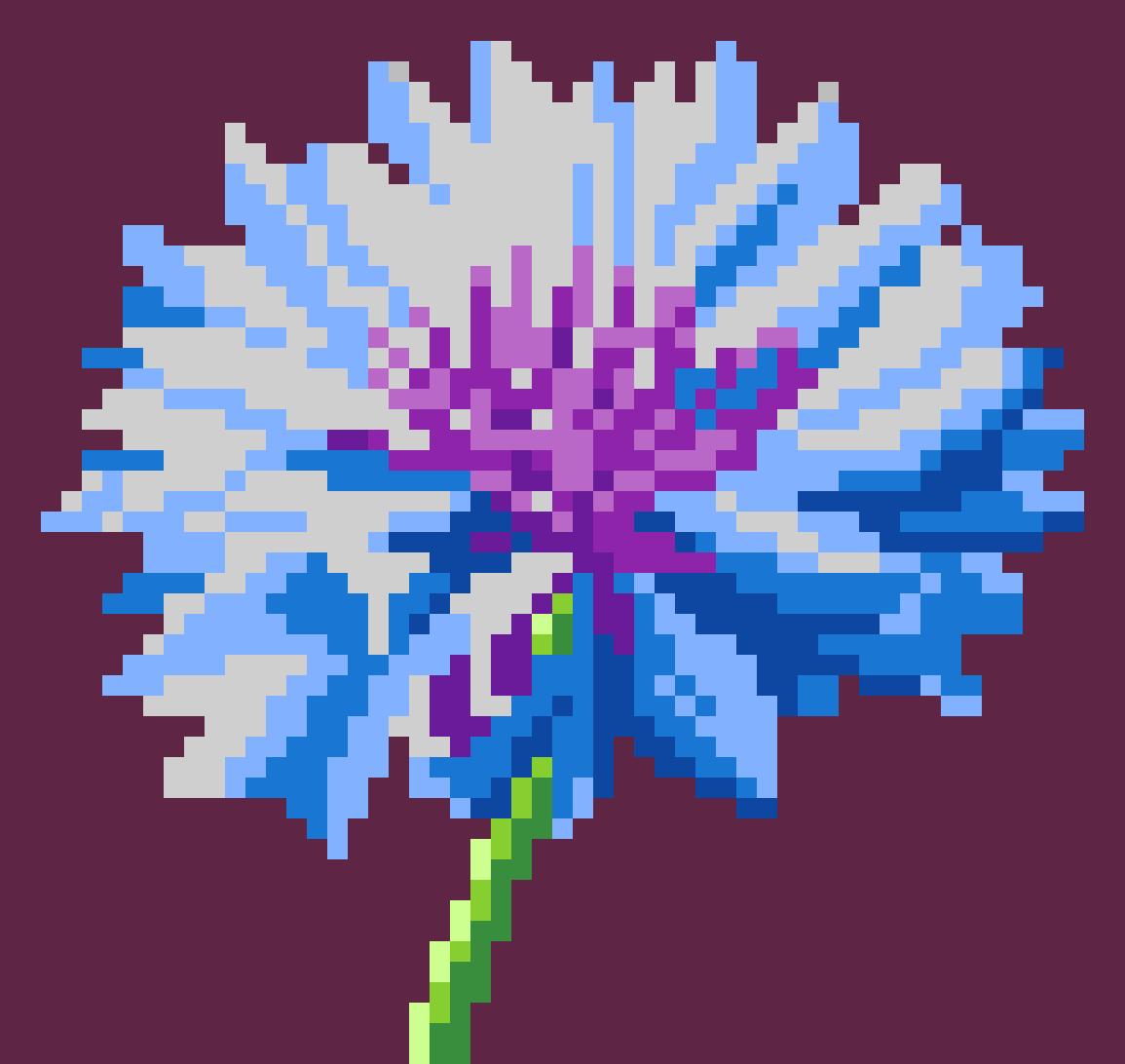 Bleuet Flower