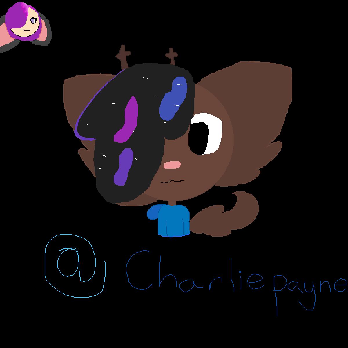 @Charliepayne