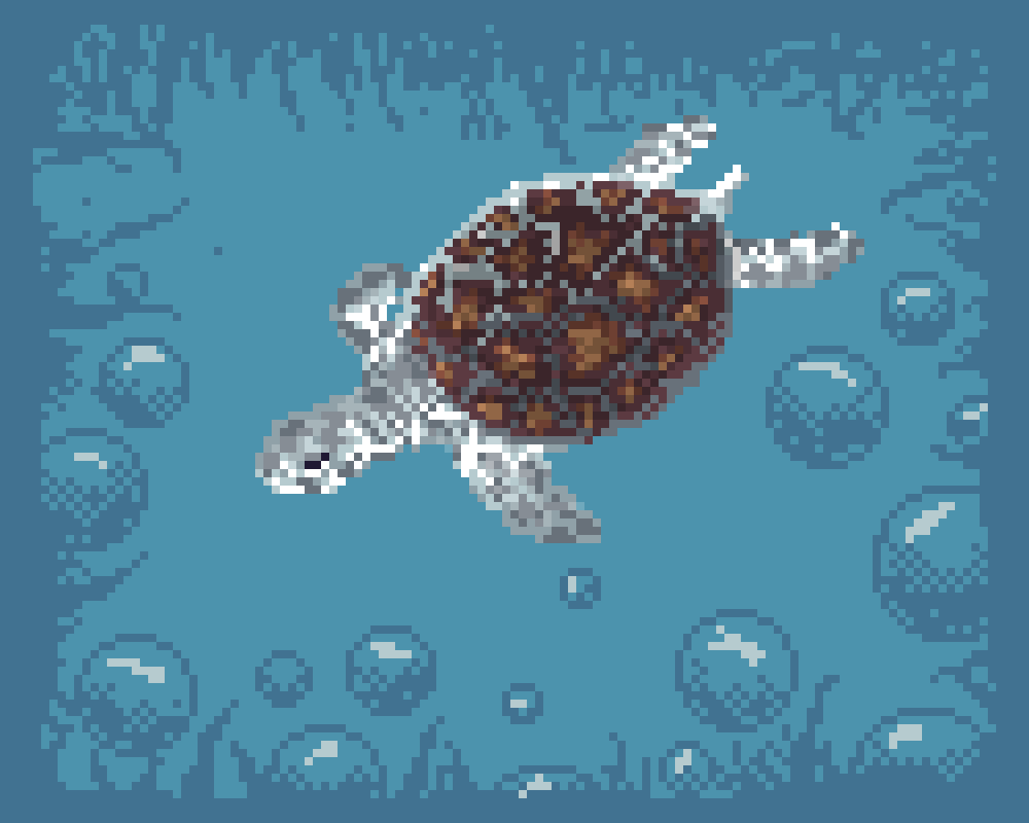main-image-Turtle   by S-p-y