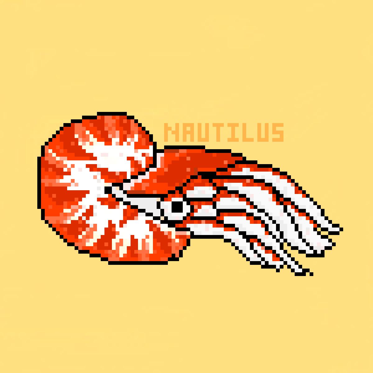 Nautilus by snappyjaw