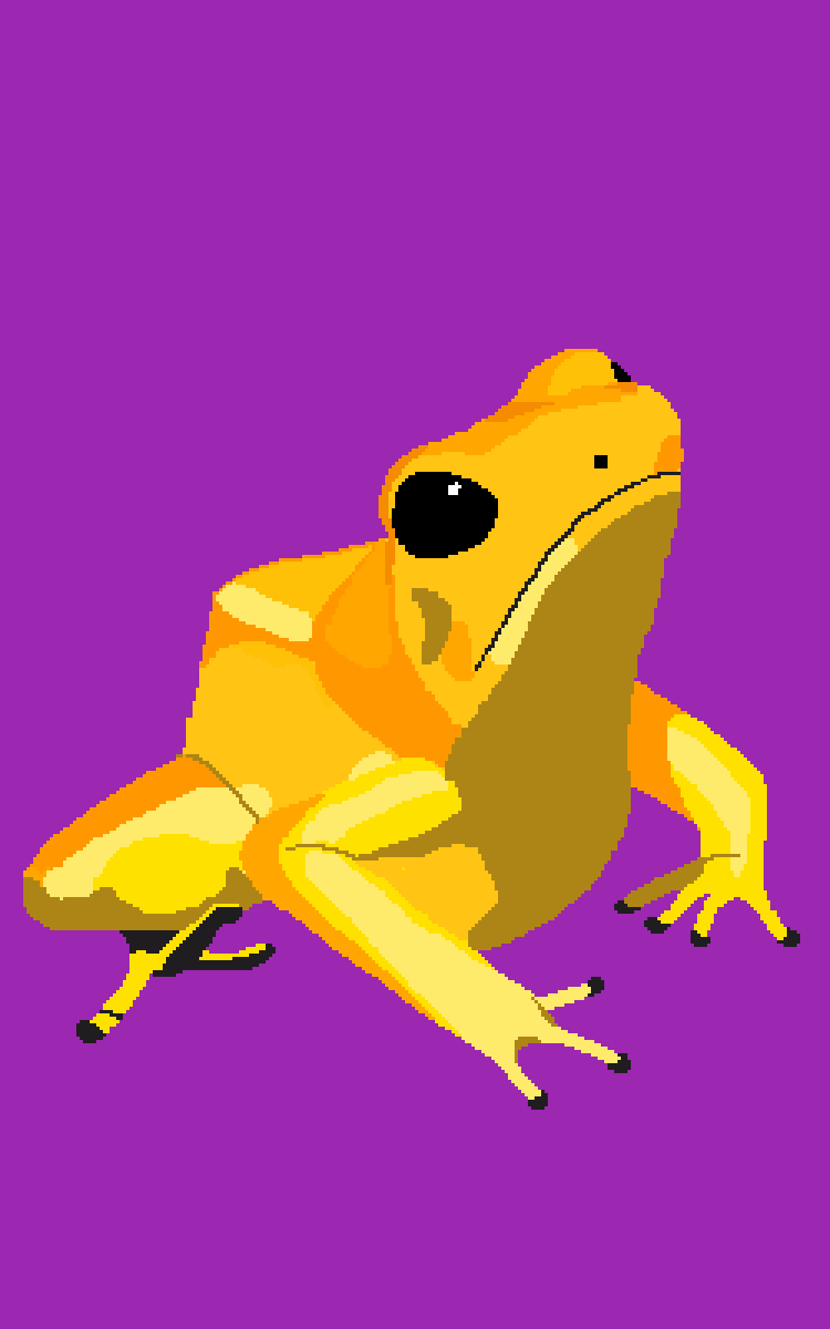 frog 3 by Beansbeans