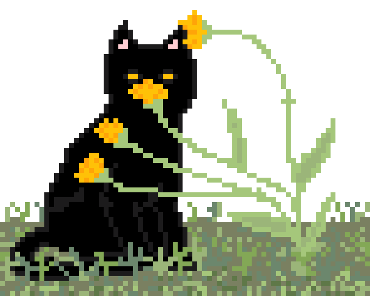 orange carnations by gingerrroot