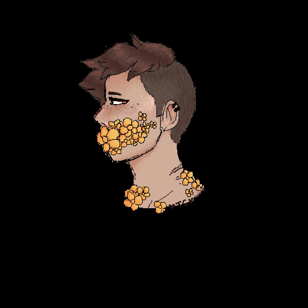 main-image-Rocky eats flowers  by Tabbycat