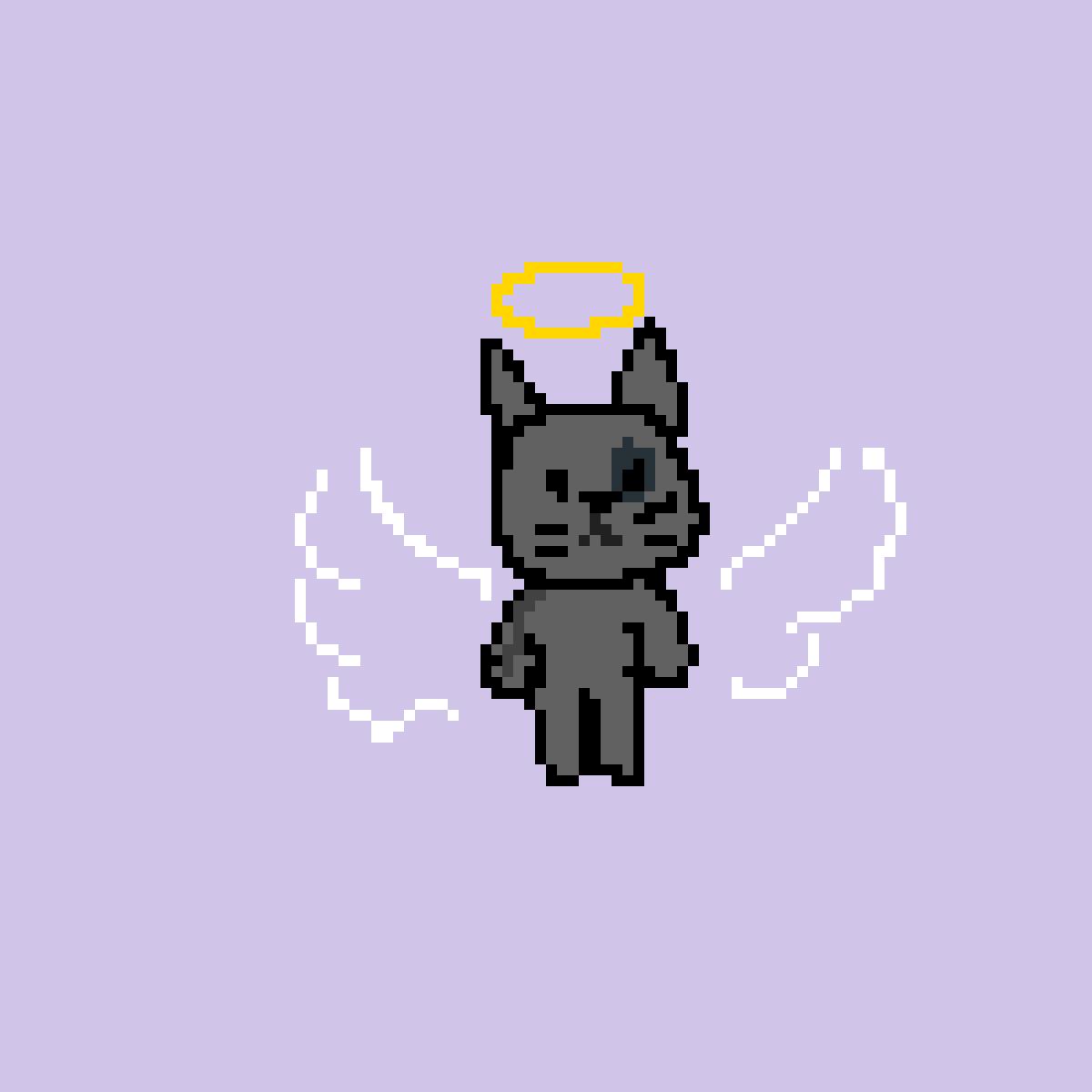 gato by Maquinista