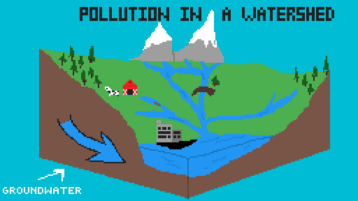 Pollution in a Watershed (School Project)