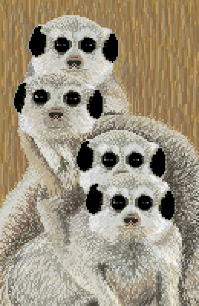 Meerkat Mound
