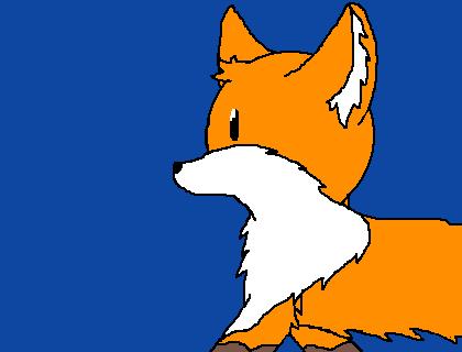 Foxxxx