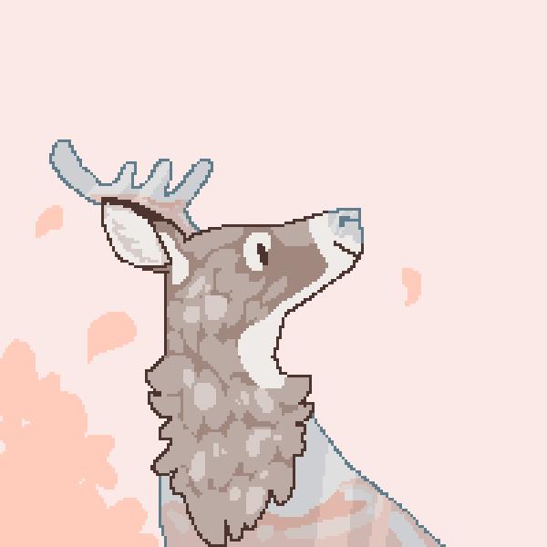Ekitie deer!