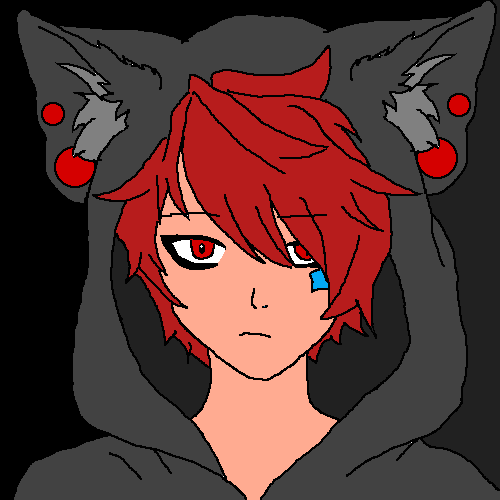 Boy with Wolfhoodie