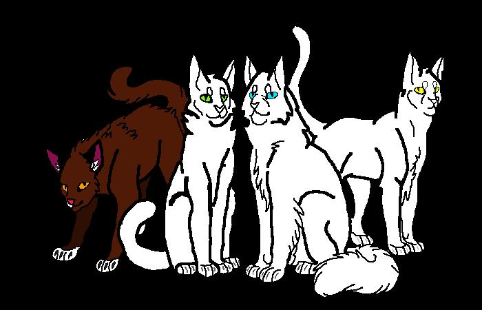cat club collab
