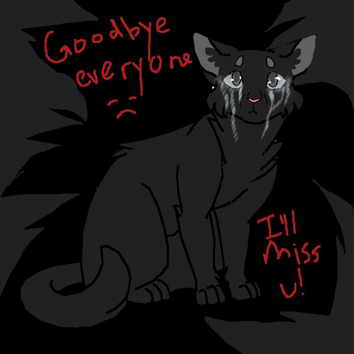 Goodbye everyone! I'm so sorry