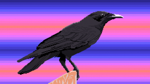 Crow (For @Nihilist)
