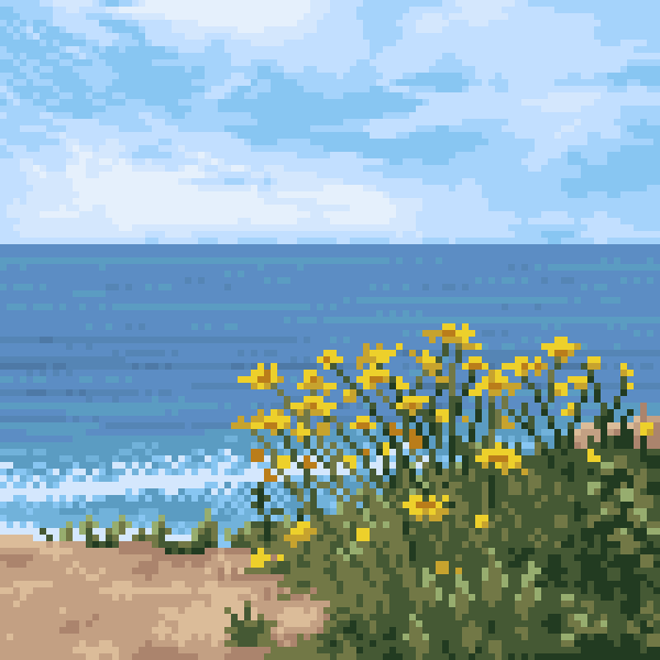 A view of the ocean