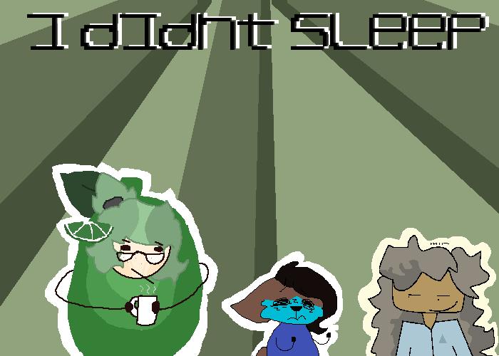 I Didn t Sleep
