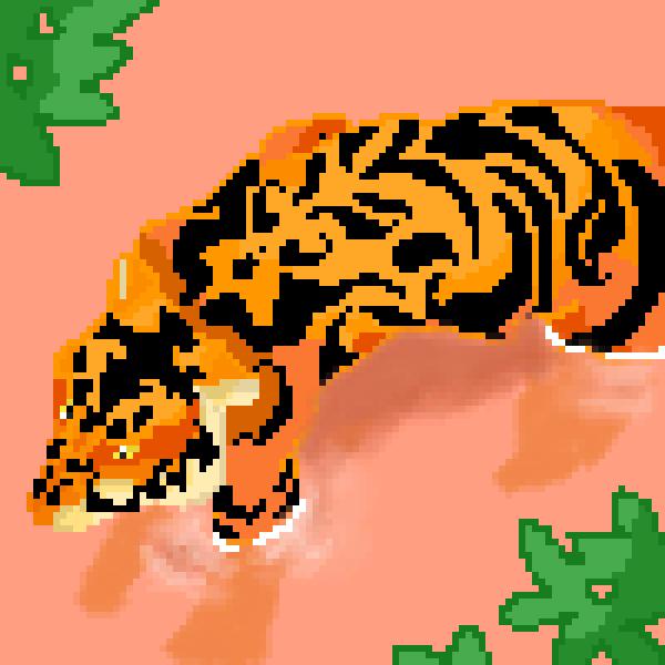 Water Tiger