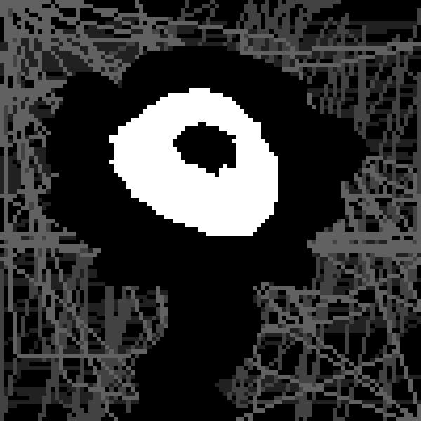 dark eyed flower