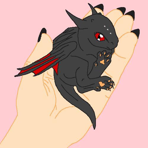 me holding a dragon