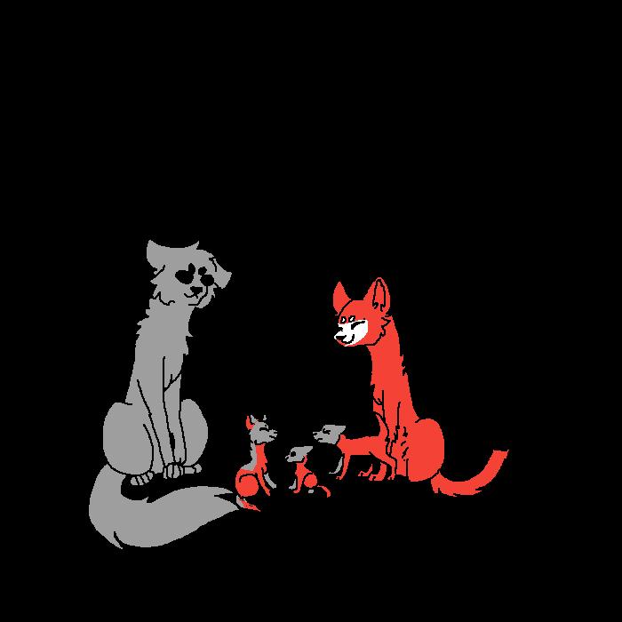 fox x wolf