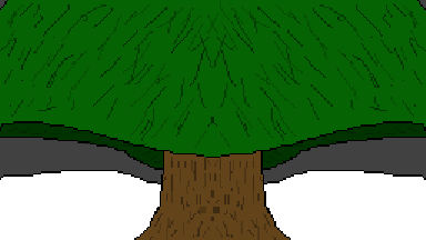 an undecorated tree