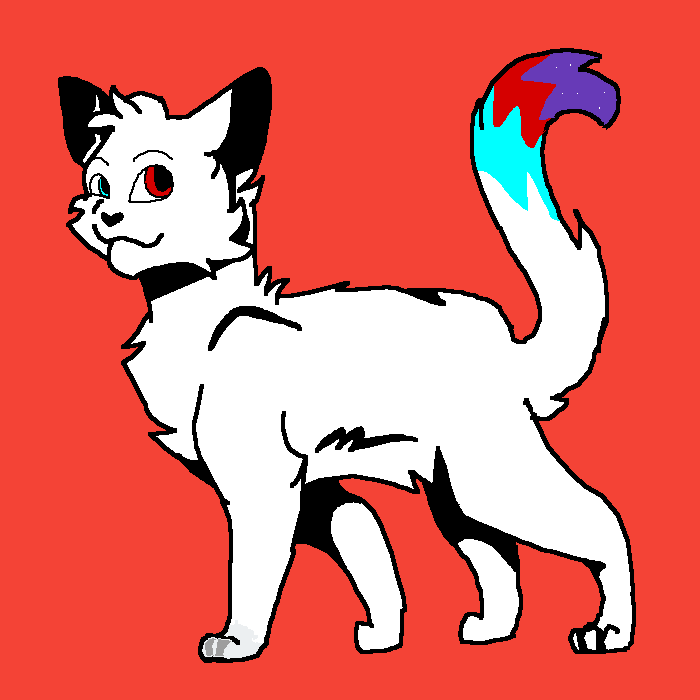 Wolfy as a cat