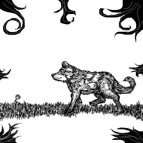 black and white wolf ^w^