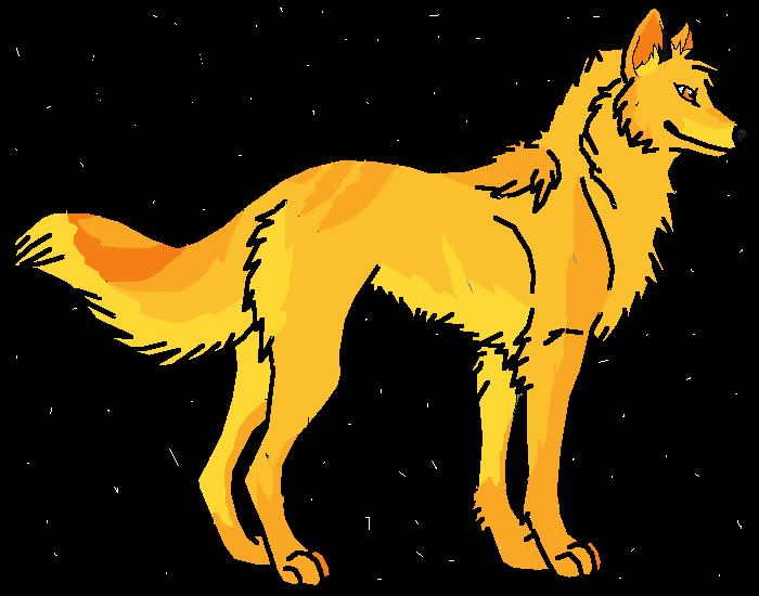 Golden Getriever
