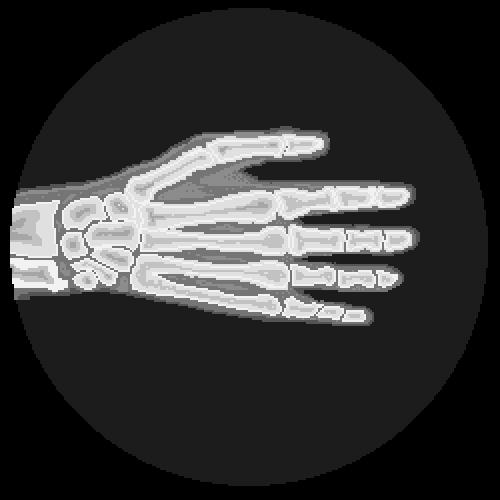 hand x-ray animation