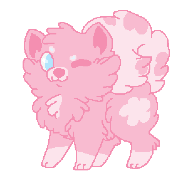 cotton candy puppy