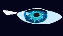 Nightwing eye