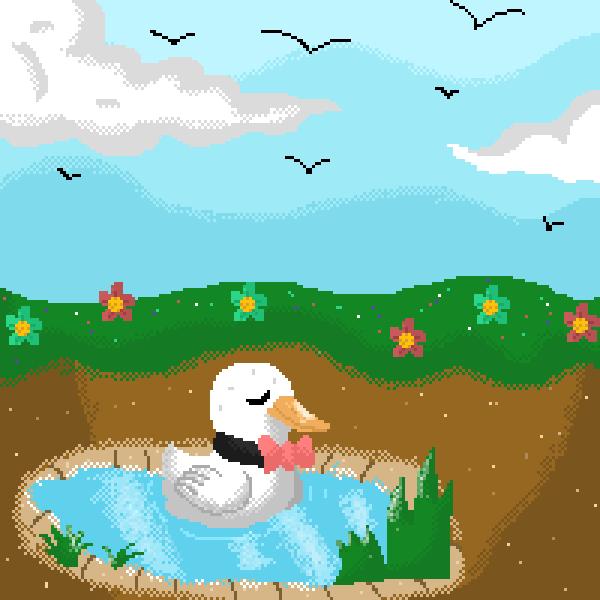 Mr.Quack