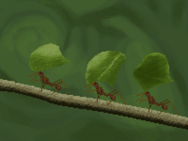 Leaf cutter ants animation