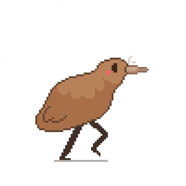 Backwards Legs Kiwi