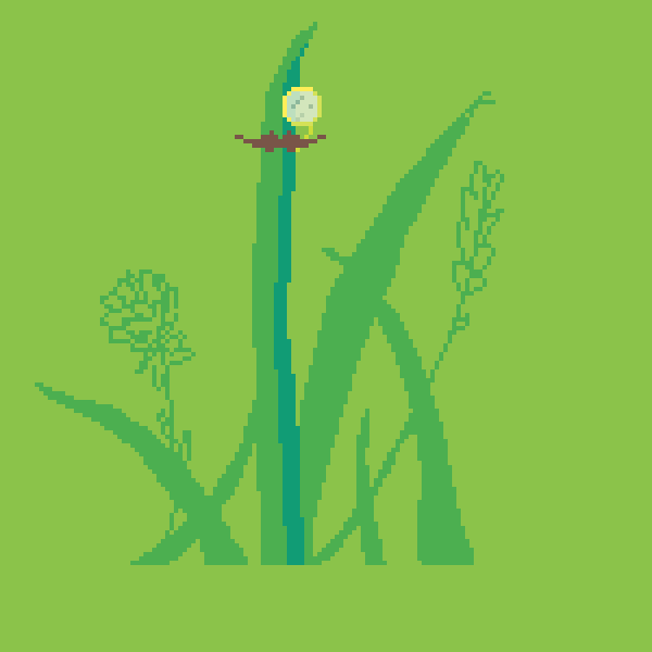 Fancy Grass