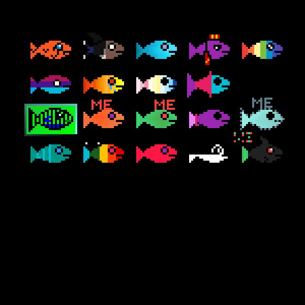 Fish Collab